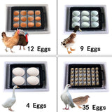 Superb Automated Digital Bird Egg Brooding Tool