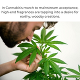 Scent Refresher - Cannabis