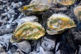 POSTPONED UNTIL FURTHER NOTICE Backyard Oyster Roast, April 4 Ticket for 20yrs old and younger