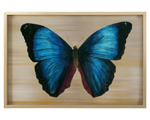 Colored Butterfly Acrylic Pan Wall Art