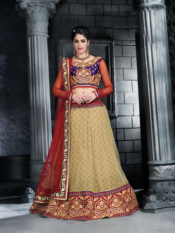 Women's Net Fabric Pretty A Line Lehenga Choli With Stones Work Dupatta