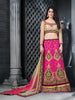 Women's Net Fabric & Hot Pink Color Pretty A Line Lehenga Style With Resham Work Dupatta