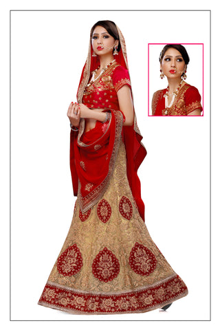 Women's Brown Pretty A Line Lehenga Choli