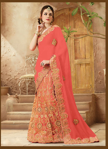 Coral Saree With Gorgeous Embroidered Pallu