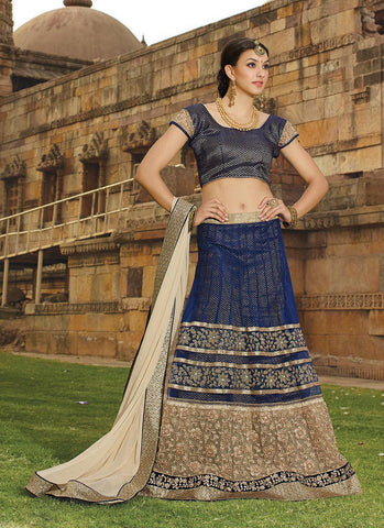 Women's Net Fabric & Navy Blue Pretty Circular Lehenga Style With Lace Work Dupatta