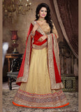 Women's Pretty A Line Lehenga Style in Tan Brown With Mirror Work Dupatta