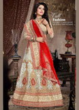 Women's Tan Brown Color Pretty A Line Lehenga Choli With Lace Work Dupatta