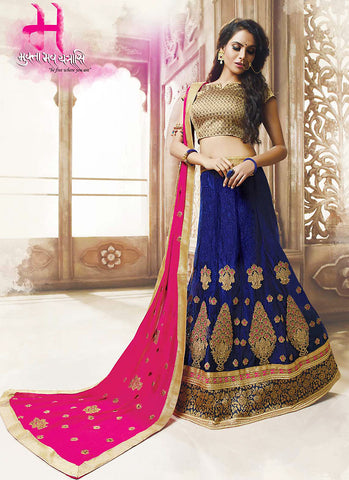 Women's Net Fabric & Navy Blue Pretty A Line Lehenga Style With Resham Work Dupatta