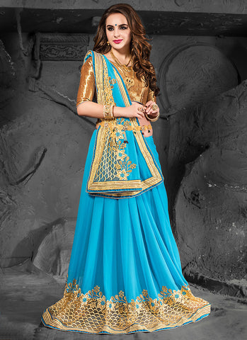 Striking Embroidered Pallu Saree in Sky Blue Color
