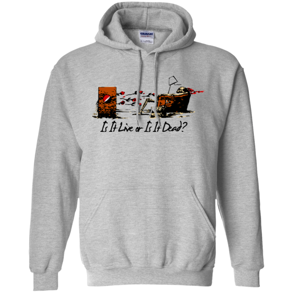 Is It Live Couch Tour Pullover Hoodie