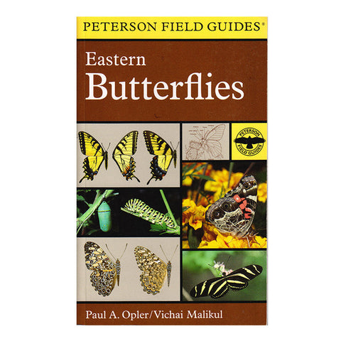 PETERSON EASTERN BUTTERFLIES
