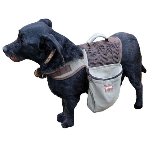 BACKPACK/HARNESS LARGE