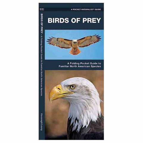 BIRDS OF PREY