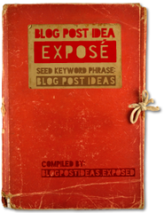 Blog Post Ideas Exposé