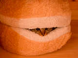 The Cat Burger Bed