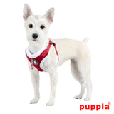 Blitzen Soft Harness