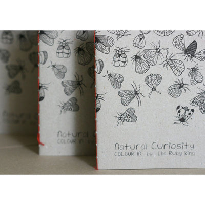 Natural Curiosity Coloring Book