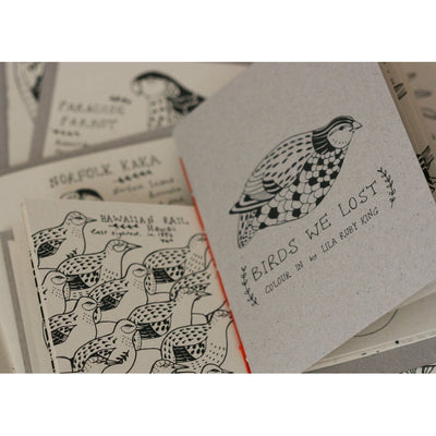 Birds We Lost Coloring Book