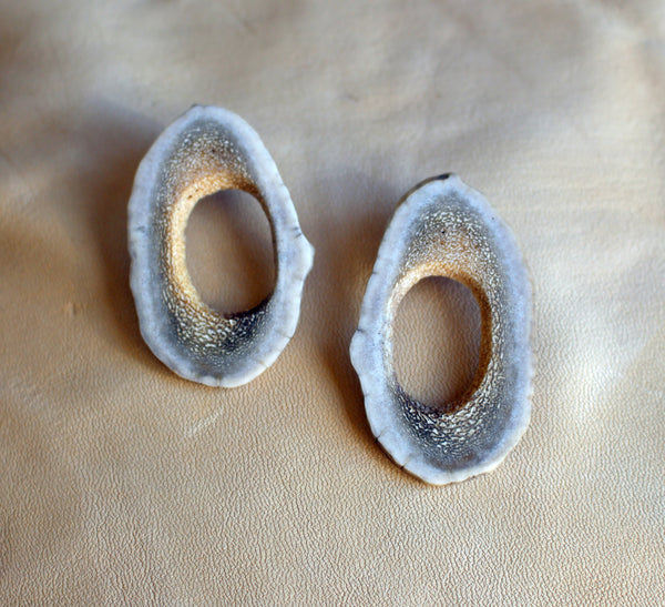 Moose Antler Oval Earrings