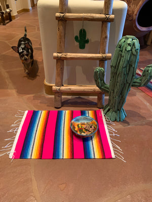Pink serape dog placemat