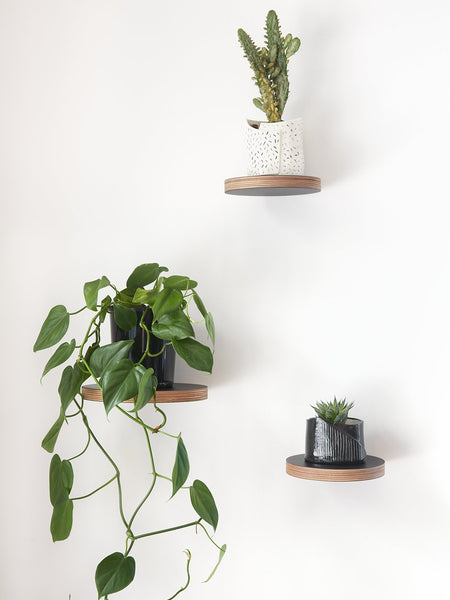 Shelves and Planters