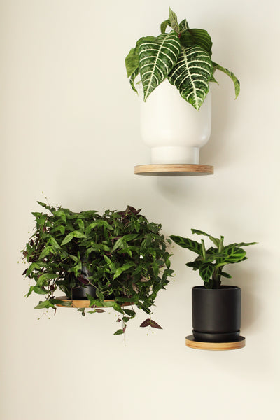 Small Oslo Planter - white