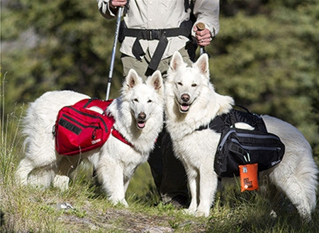 Ultimate Trail Pack in Black Large