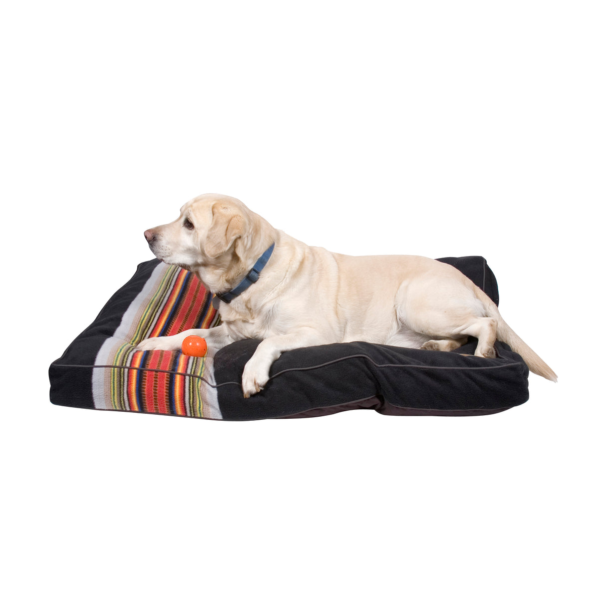 lab on Acadia National Park Dog Bed