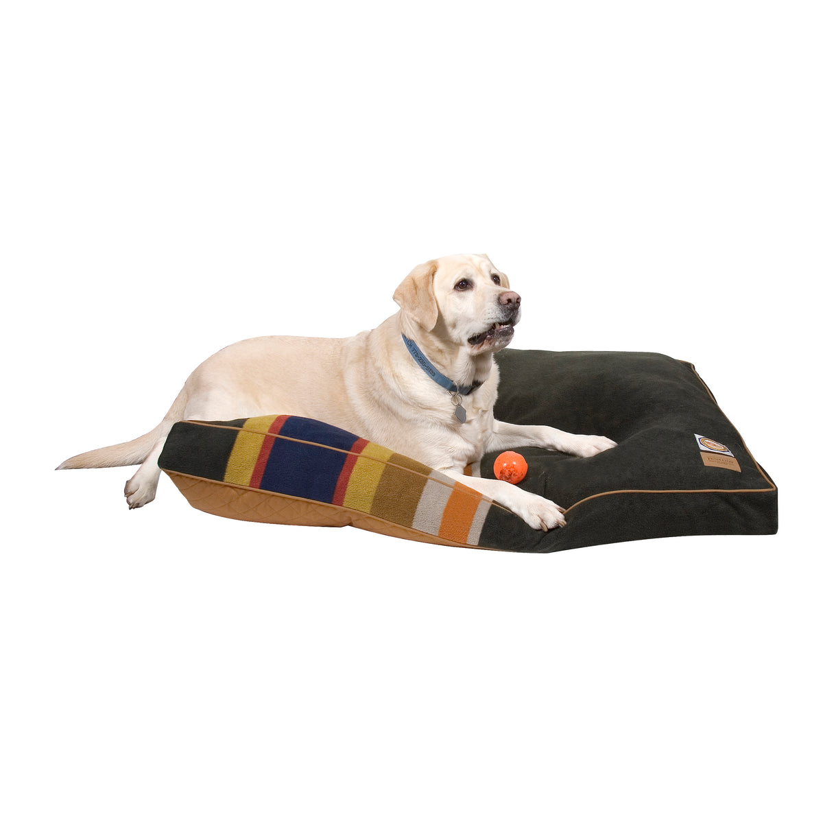 lab on Badlands National Park Dog Bed