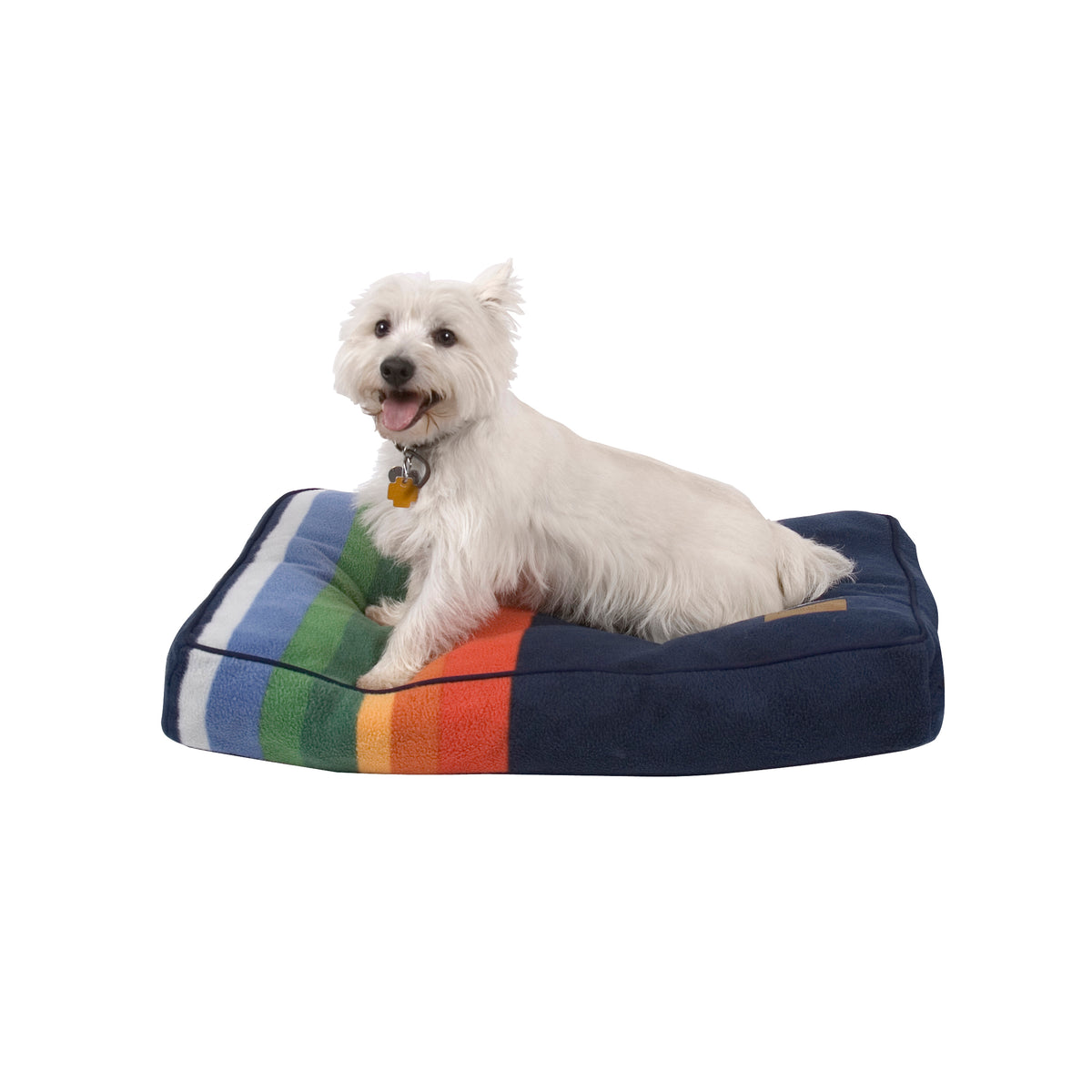 terrier on Crater Lake National Park Dog Bed