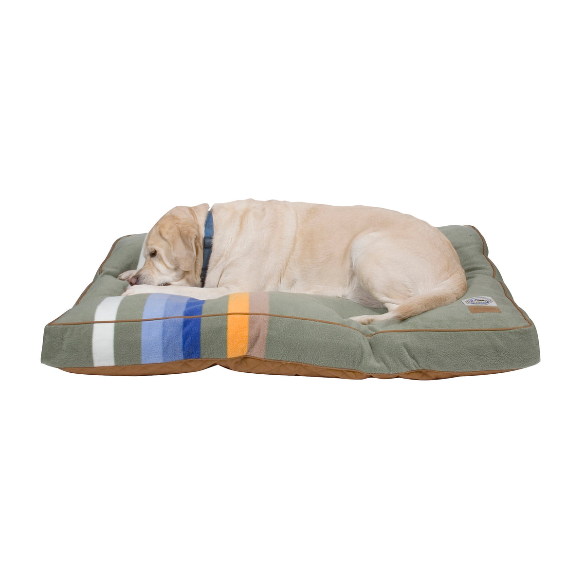 Lab on Rocky Mountain National Park Dog Bed