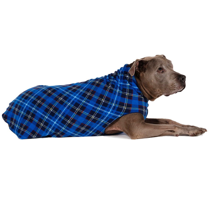 Gold Paw Stretch Fleece in Blue Plaid