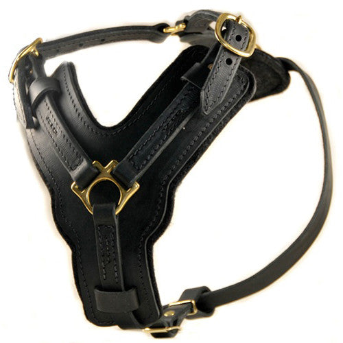 "The Dean & Tyler ""The Victory"" Harness"