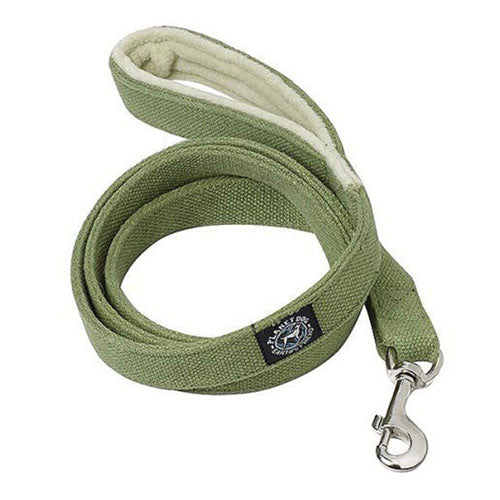 Planet Dog Hemp Leash at The Uncommon Hound - green