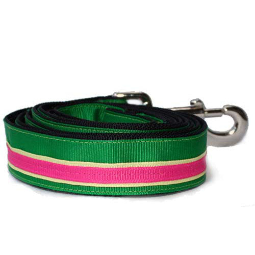 Preppy Leash