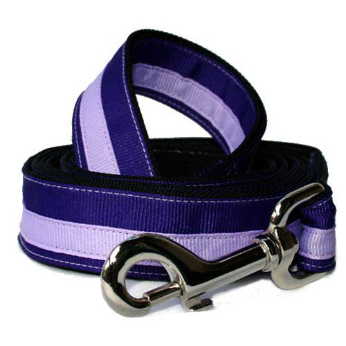 Purple Rain Leash