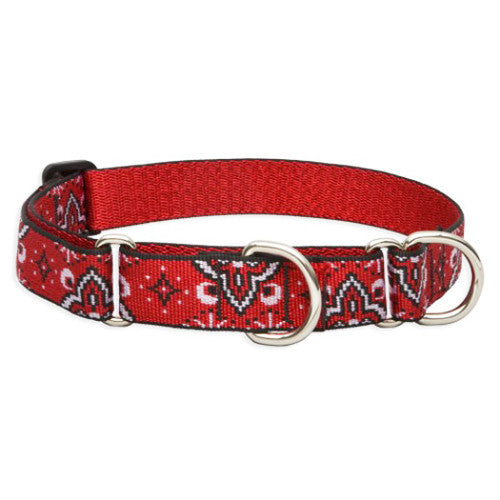 Lupine Wild West Combo Collar