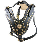 "The Dean & Tyler ""Royal Stud"" Harness"