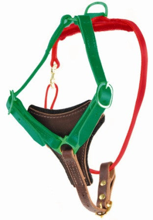 Dean's Choice harness measuring
