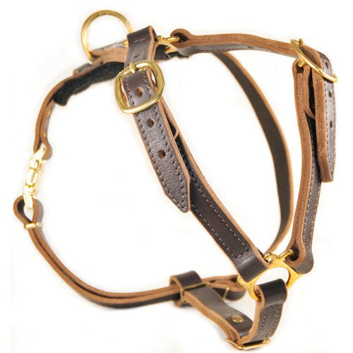 "The Dean & Tyler ""Tyler's Choice"" Harness"