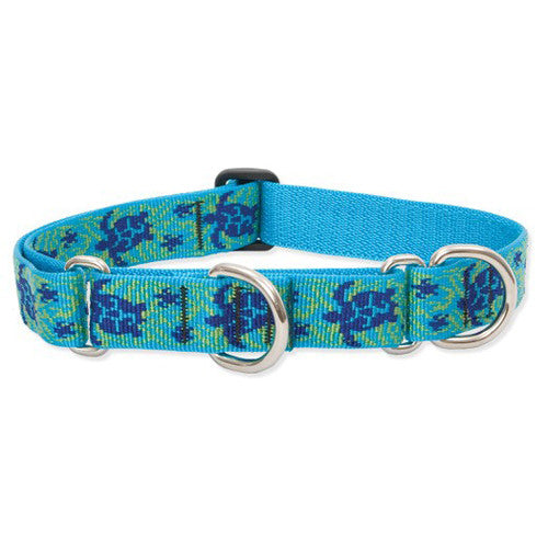 "Lupine 1"" Large Dog combo collar ""Turtle Reef"", 15"" - 22"""