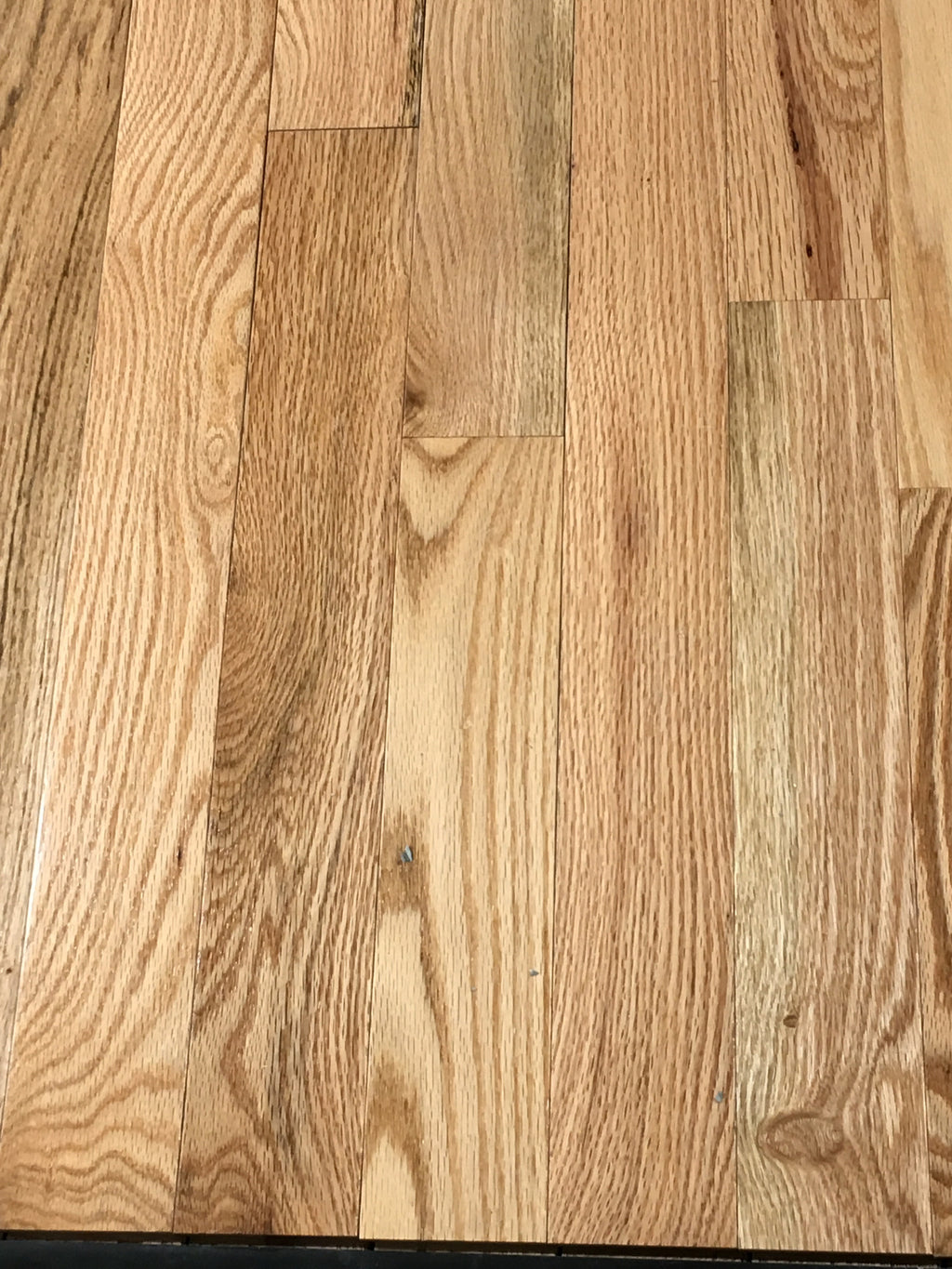 "Bruce 3 1/4""  Oak Natural Forest Glen  --  22 sqft p/ctn"