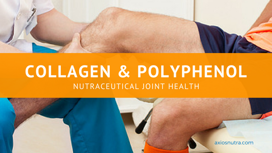Collagen and Polyphenol Nutraceuticals Provide Joint Health