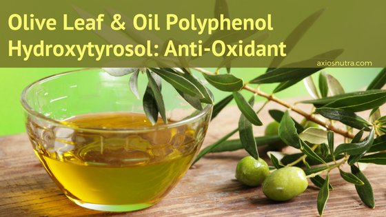 Olive Leaf and Oil Polyphenol Hydroxytyrosol Role in Disease Prevention