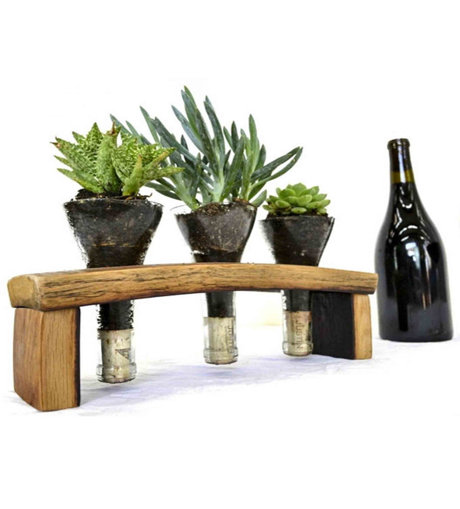 Wine Barrel Stave And Glass Herb Terrarium Rustic Wall Co