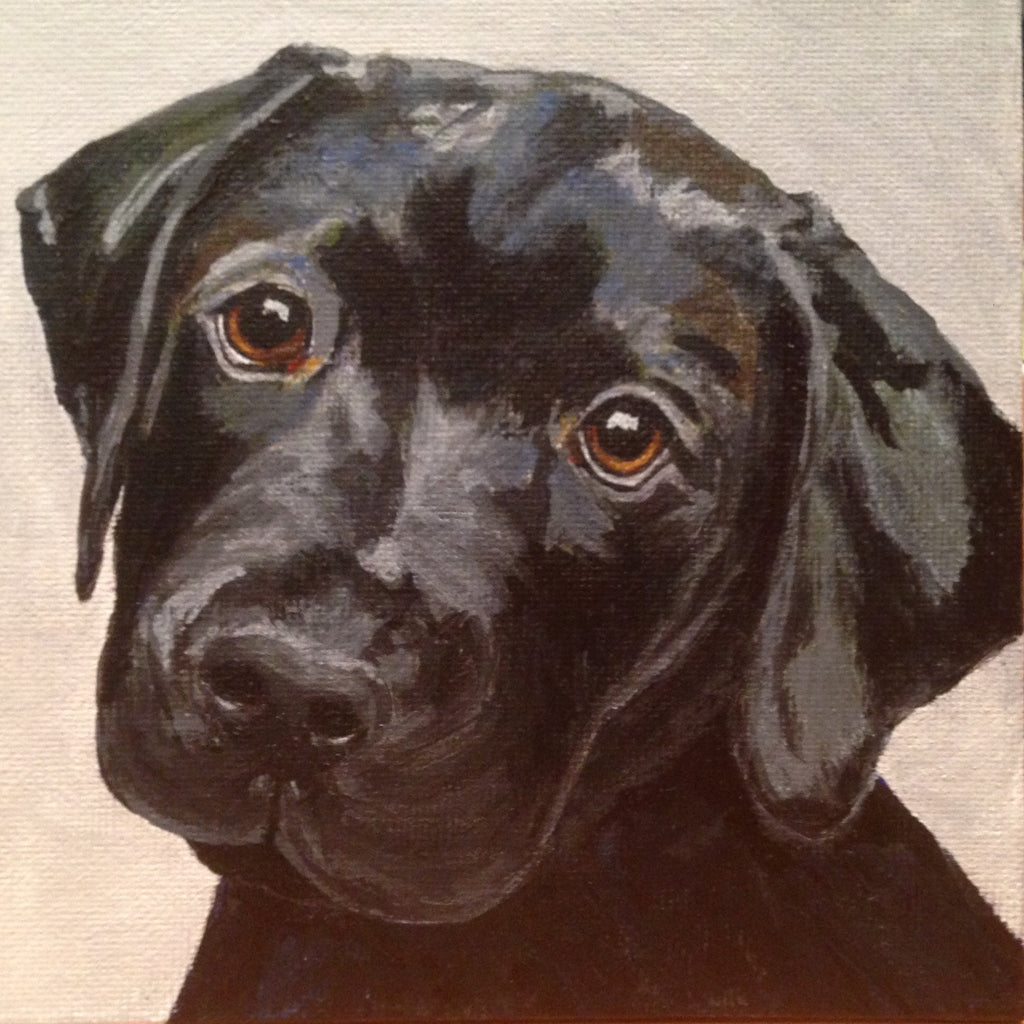"Black Lab - 5""x5"" Available in my Print section - Original is SOLD"