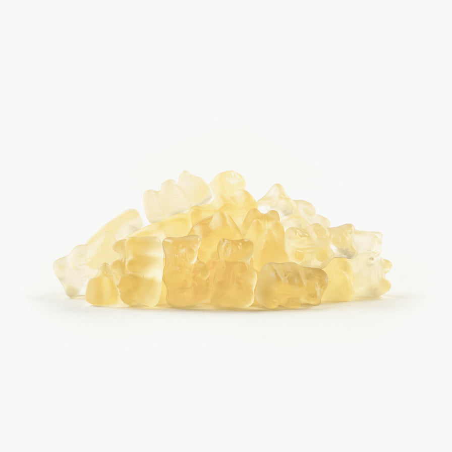 Champagne Gummy Bears - 1 pound