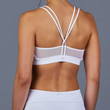 The Whites Bra Top