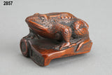 Toad on roof tile