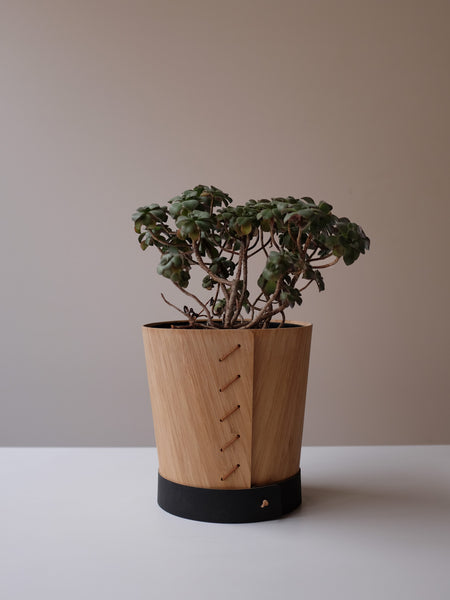 Bamboo Pot Plant Skin - Large (7 inch) - Free shipping in AUS